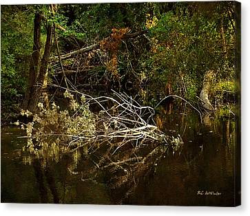In The Wild Wood Canvas Print by RC deWinter