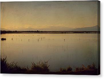 In These Peaceful Moments Canvas Print by Laurie Search