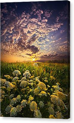 In This Moment We Are Infinite Canvas Print by Phil Koch