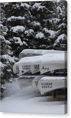 In Winter Sorage Canvas Print by Tim Grams