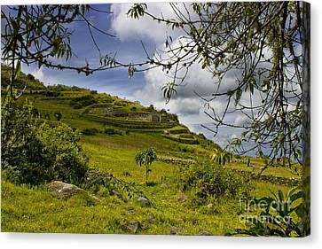 Inca Ruins On Mount Cojitambo In Ecuador Canvas Print by Al Bourassa
