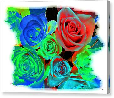 Incandescent Roses Canvas Print by Will Borden