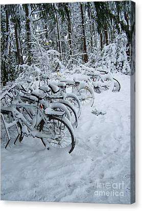 Inclement Weather Canvas Print by KD Johnson