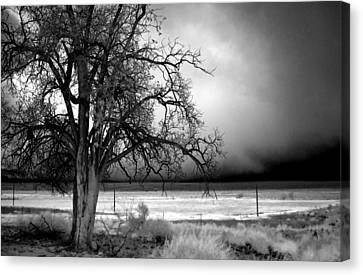Incoming Storm Canvas Print by Cat Connor