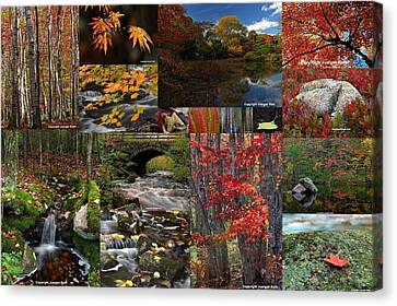 Incredible New England Fall Foliage Photography Canvas Print by Juergen Roth