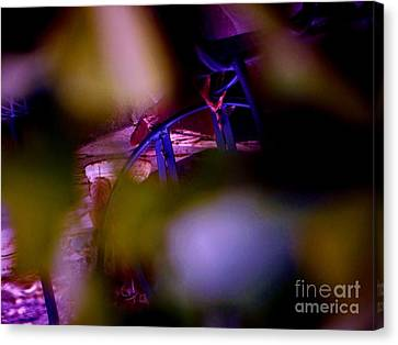 Incripted Canvas Print by Sharon Costa