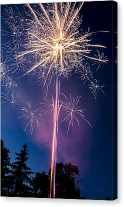Independence Day 2014 1 Canvas Print