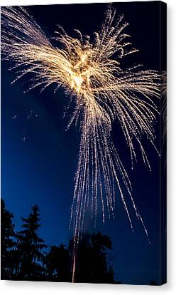 Independence Day 2014 8 Canvas Print
