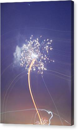 Canvas Print featuring the photograph Independence Day by Jani Freimann