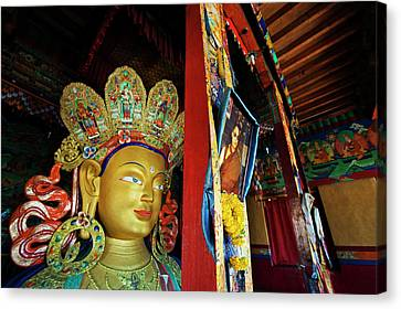 Tibetan Canvas Print - India, Ladakh, Thiksey, Picture by Anthony Asael