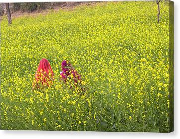 India, Rajasthan, Khichan Village Canvas Print