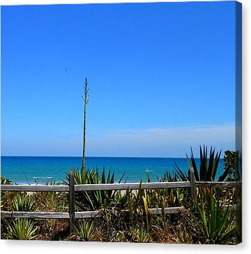 Canvas Print featuring the photograph Indialantic By The Sea by Kay Gilley