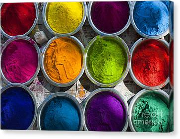 Indian Coloured Powder Bowls Canvas Print by Tim Gainey