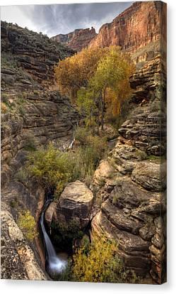 Indian Creek Canvas Print by Kiril Kirkov