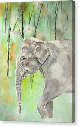Indian Elephant Canvas Print