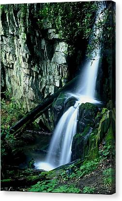 Indian Falls Canvas Print