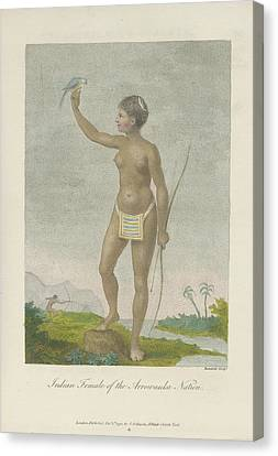 Indian Female Of The Arrowauka Nation Canvas Print by British Library
