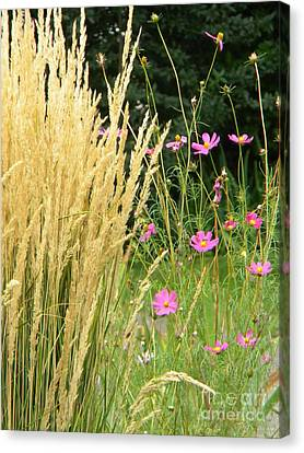 Indian Grass And Wild Flowers Canvas Print