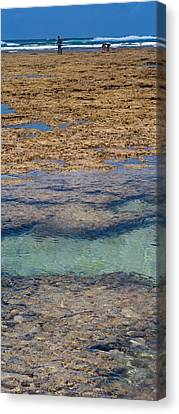Indian Ocean, Fringe Reef, Mombasa Canvas Print by Panoramic Images