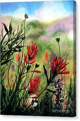 Indian Paint Brush Canvas Print