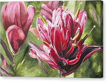 Canvas Print featuring the painting Indian Paintbrush by Aaron Spong