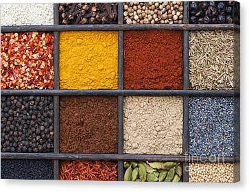 Indian Spices Canvas Print by Tim Gainey