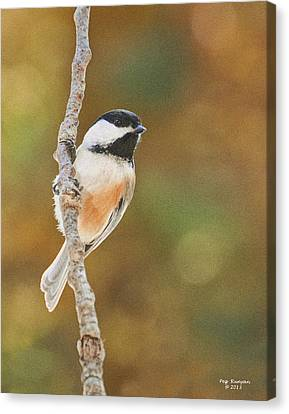Indian Summer Chickadee Canvas Print