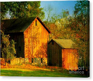 Indian Summer In October Canvas Print