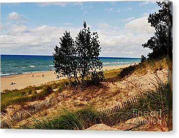 Indiana Dunes Two Tree Beachscape Canvas Print