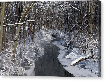Indiana Winter Canvas Print by Thomas Fouch