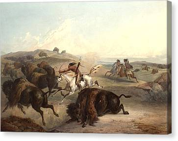 Indians Hunting The Bison Canvas Print