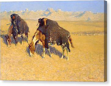 Indians Simulating Buffalo Canvas Print by Frederic Remington