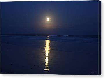 Indigo Moon Canvas Print