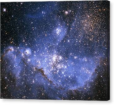 Infant Stars In The Small Magellanic Cloud Canvas Print by Nasa