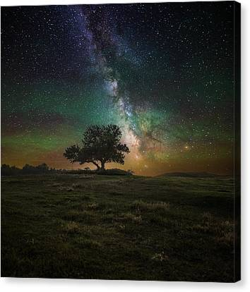 Infinity Canvas Print by Aaron J Groen
