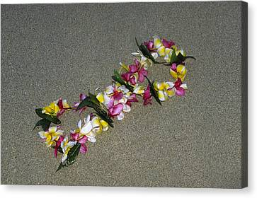 Infinity Lei Canvas Print by Morris  McClung