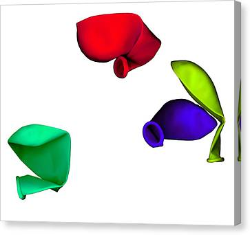 Inflated Idea 1 Canvas Print