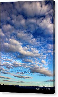 Influence Of Dusk Canvas Print by Michael Eingle