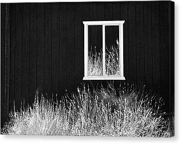 Infrared Barn Canvas Print by Sharon Beth