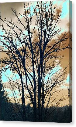 Canvas Print featuring the photograph Infrared Split Second Sun Couds by Rebecca Parker