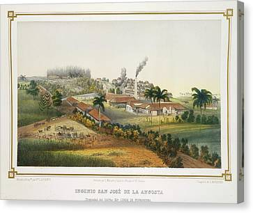 Ingenio San Jose De La Angosta Canvas Print by British Library