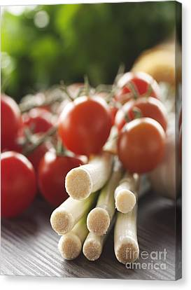 Ingredients For Tomato Sauce Canvas Print by Mythja  Photography