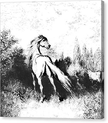 Ink Horse Canvas Print by Gina Dsgn