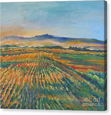 Inland Fields Canvas Print