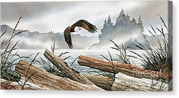 Inland Sea Eagle Canvas Print by James Williamson