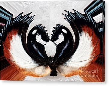 Web Gallery Canvas Print - Inner Web by John Rizzuto