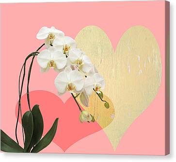 Golden Pink Orchid Canvas Print - Innocent Love by Paul Ashby
