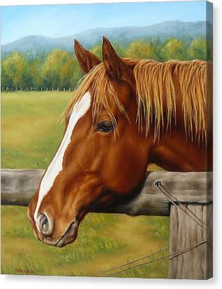 Canvas Print featuring the painting Inquisitive by Margaret Stockdale