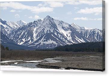 Inside Denali National Park 4 Canvas Print