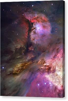 Nebular Canvas Print - Inside Orion by Ricky Barnard